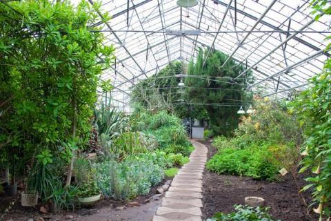 Ботанічний сад в Полтаві