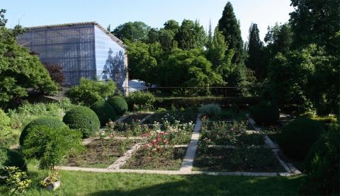 Ботанический сад - Ужгород
