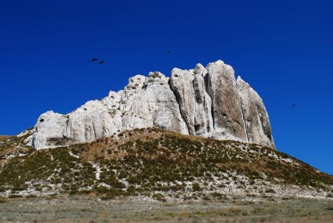 Крейдяні Білокузьминівські скелі